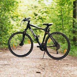 rynek rowerowy